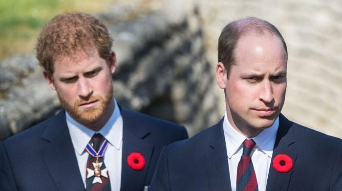 Prince Harry, Meghan Markle's wasteful spending triggered a rift with Prince William